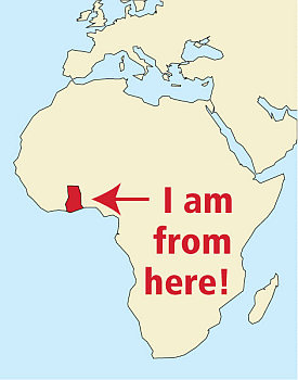 alliance-francaise-de-chicago-testimonial-francis-africa